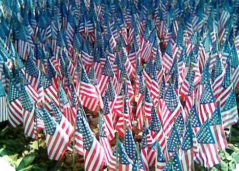flags-multiple-in-ground