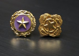 An act of Congress established the Gold Star Lapel Pin (left), for issue to immediate family members of service members killed in combat. The Next of Kin Pin (right) signifies a service-related. Photo courtesy of the U.S. Army.