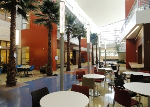 Freeze-dried palm trees line the Main Street common area at the Haley VA Polytrauma and Rehabilitation Center where patients can relax at the internet cafe. There are cooking facilities and a children's play area as well as access to an outdoor deck.